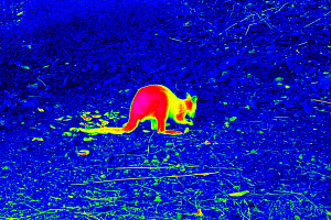 Ростех создал портативный монокуляр с функцией прибора ночного видения и тепловизора