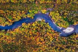 «Швабе» усовершенствовал измерительный прибор для оценки леса